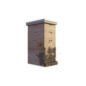 Colmenas-salva-las-abejas