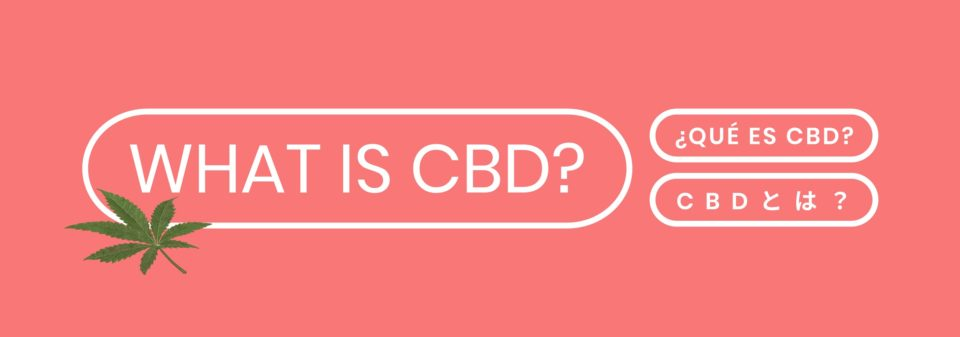 What is CBD? History, benefits and properties